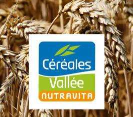 cereales_vallee_internet1800x700_2.jpg